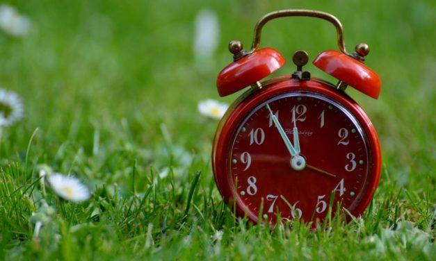 L'art de la procrastination version Haut Potentiel : 6 conseils pour se remettre en mouvement